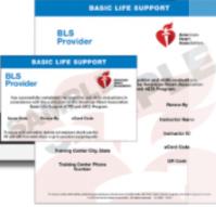 BLS Sample Ecard (2020 Guidelines)