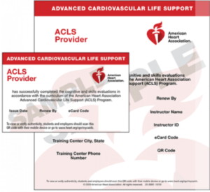 ACLS Provider Sample Ecard (2020 Guidelines)